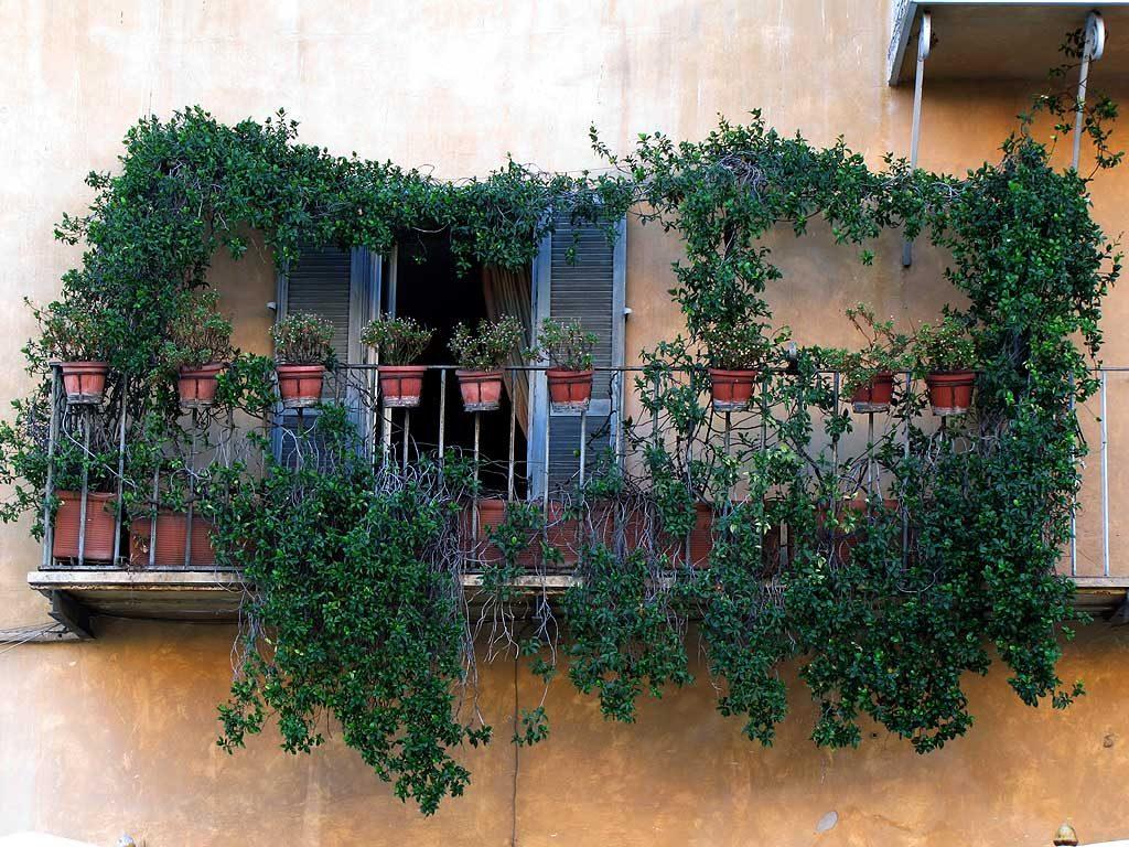 Tips voor een groen balkon